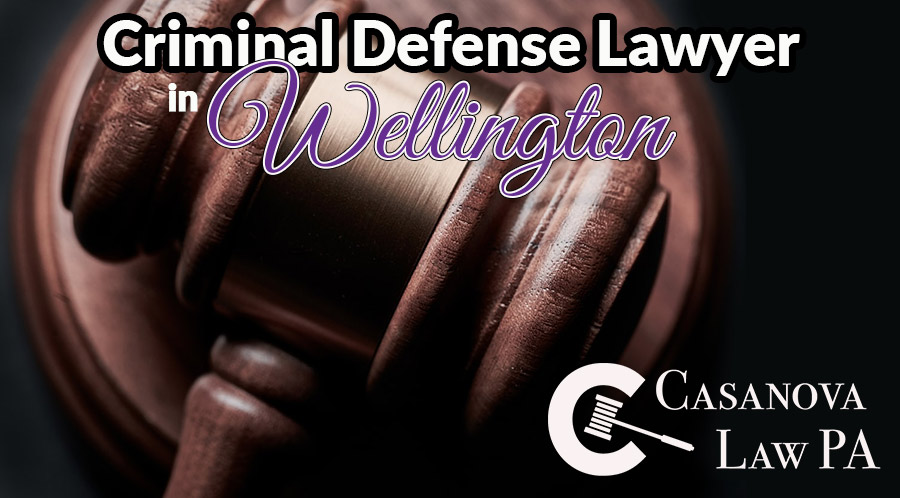Criminal Defense Lawyer in Wellington