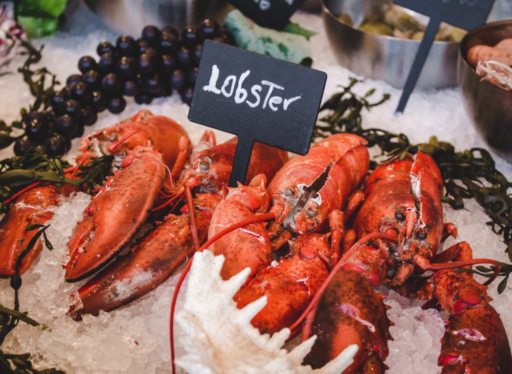 Featured image for seafood refrigeration charges blog
